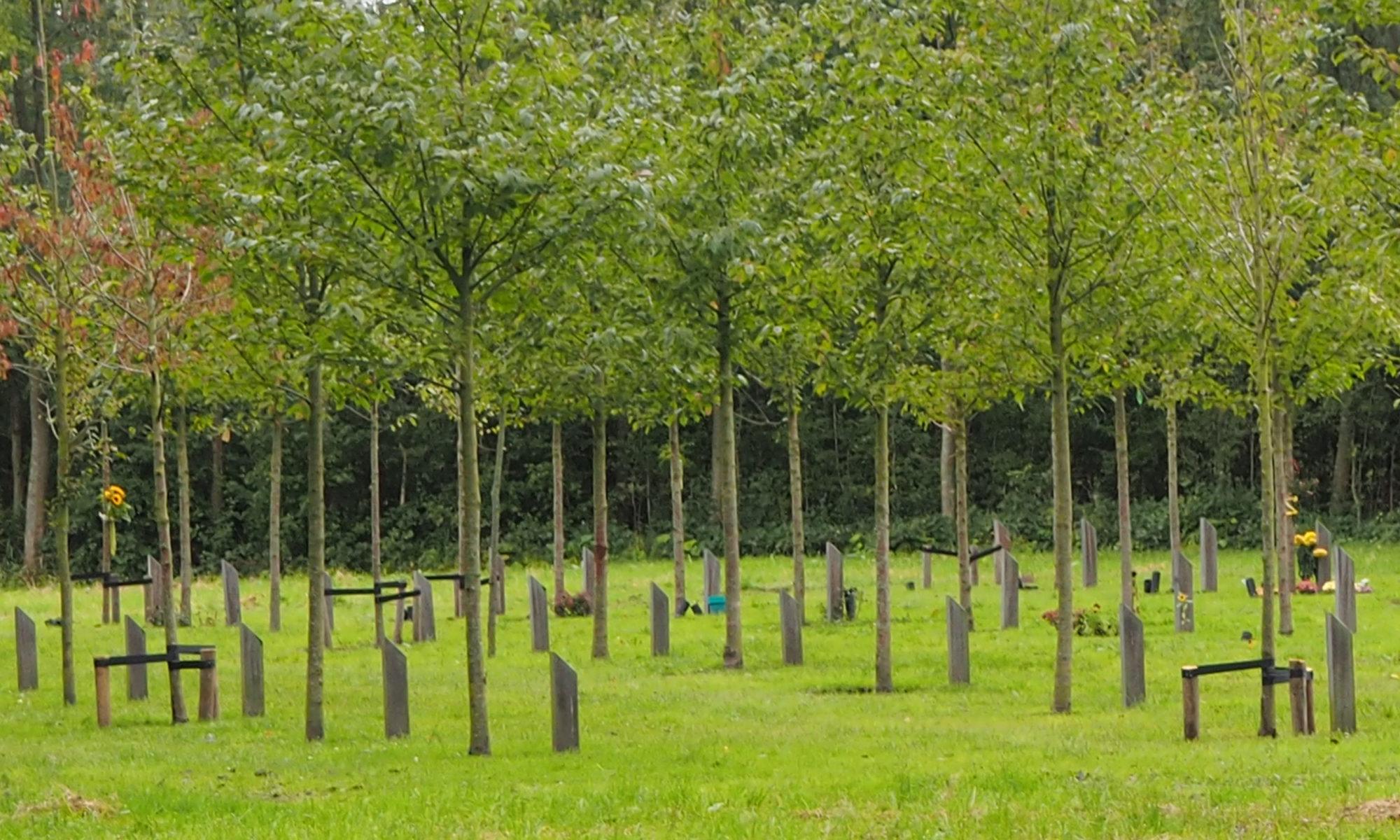 Gedenkbos Schiebroekse Park